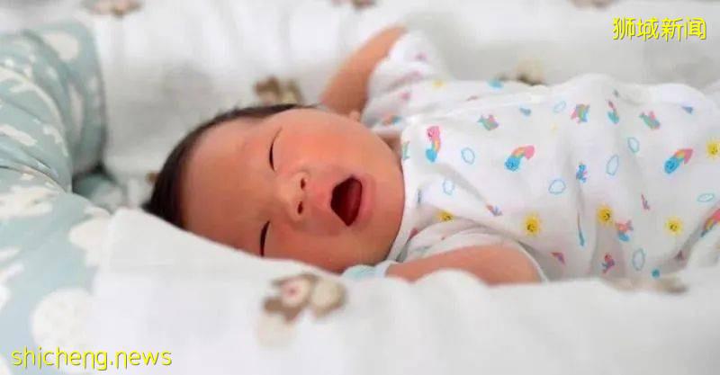 在新加坡定居的我,为什么不生二胎