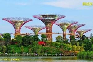 为什么新加坡移民很受欢迎?看完你就懂了