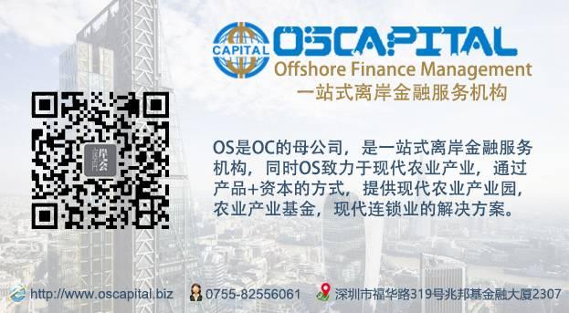 新加坡基金会和新加坡普通公司的区别