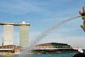 我应该为每项生意在新加坡设立不同的公司吗