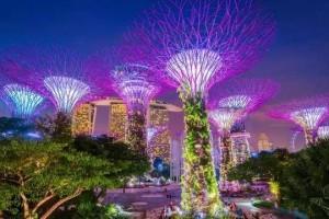 新加坡10个最美公园告诉你,花园城市有多美