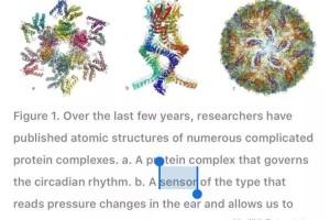 南洋理工大学教授,给病毒的蛋白质搭了个互动主题公园