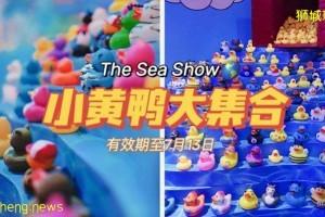 免费看展!The Sea Show正在进行中,超多艺术小黄鸭喊你来打卡