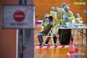 新加坡今增322例!研究发现:新冠轻症者也可能大脑严重受损
