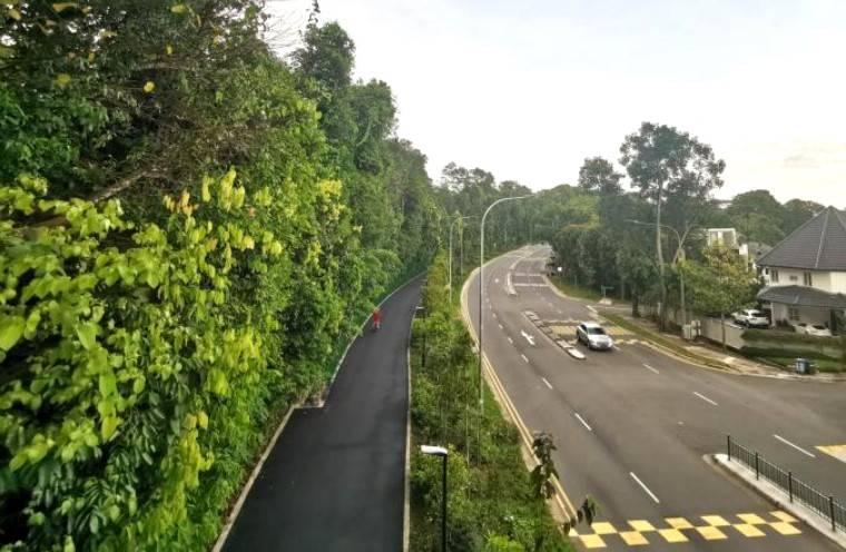 新加坡欲打造32处自然生态景观!快一起来看看吧