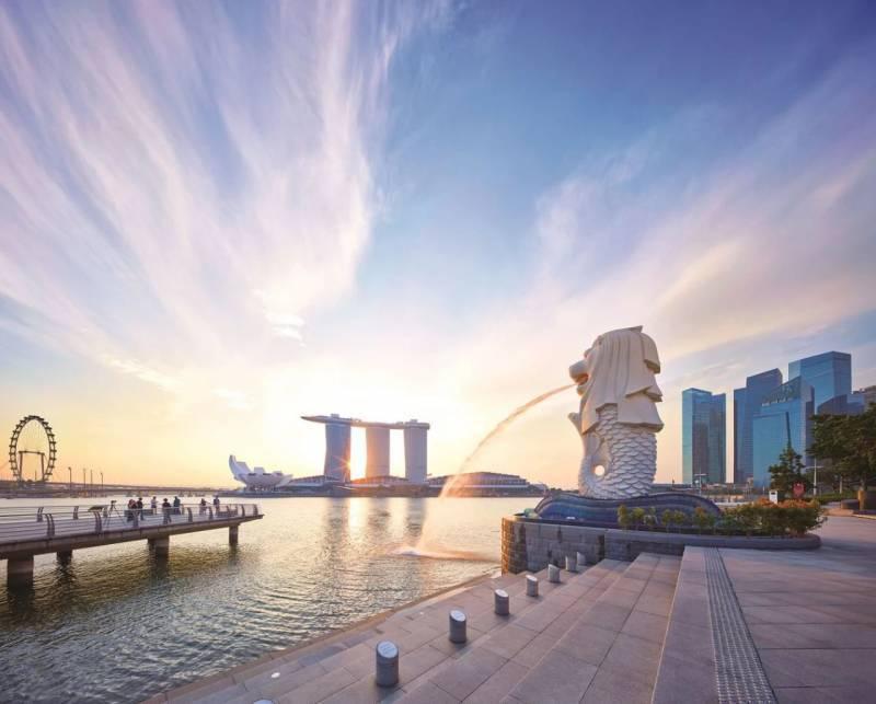 在新加坡陪读这些年,离婚、准证、孩子、疫情……我最终做了这个艰难的决定