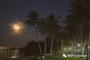 多图!新加坡的海上升明月如梦如幻