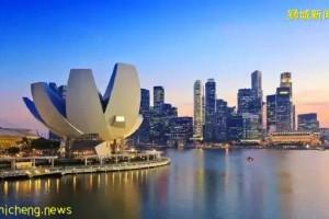 移民新加坡3年后,我居然成了这样