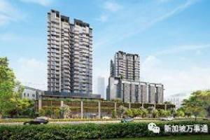 萝卜点评 | 新加坡市区新公寓火爆开盘,一个周末卖出70%单位