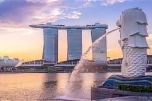 外贸老板到新加坡开公司到底会涉及哪些税