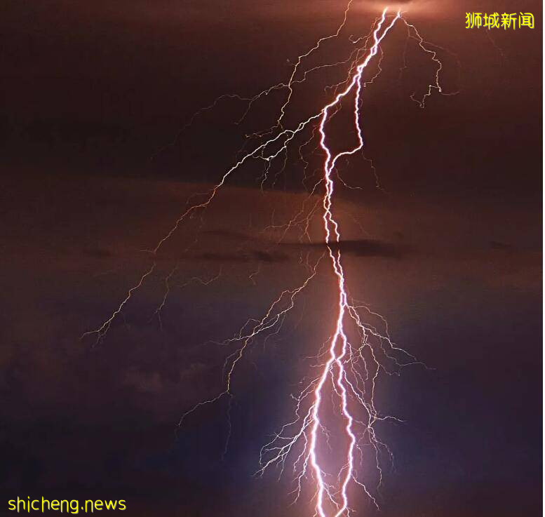 新加坡闪电美翻了!希望它能劈死新冠病毒、而不是劈翻地铁