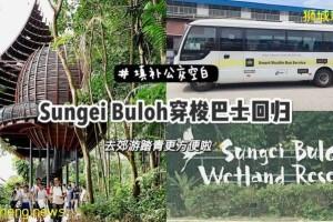 探索Sungei Buloh更便捷新方式:1块钱的Shuttle Bus又回来了