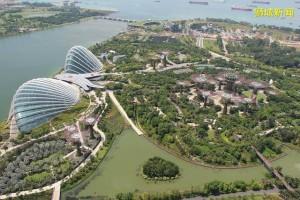 移民新加坡后感受到的方方面面