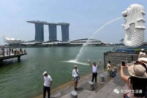 """疫情冲击经济,新加坡出现""""新穷人"""":约一成家庭营养食物不足,甚至一天只吃一餐"""