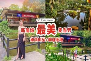 """本地最美麦当劳""""Queensway""""打卡📷繁盛树丛+绿荫植物+静谧池塘、靓""""绿""""风景线🌳"""