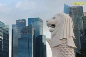新加坡移民后的所见所感