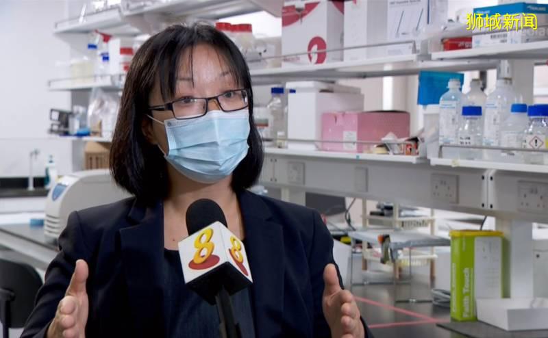 夹一夹就能治糖尿病?南洋理工大学团队研发新型药物递送技术