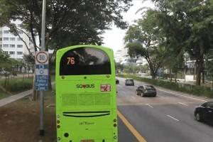 爆赞!新加坡10条最美巴士线路,花最少的钱玩遍全岛