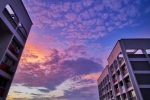 """新加坡清晨出现粉紫色""""神仙""""天空!大波美图惊艳全岛"""