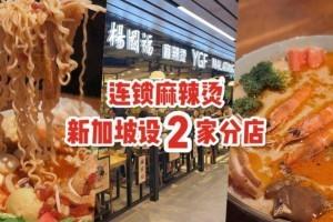 杨国福麻辣烫落户新加坡!热辣来袭,连开2家分店🌶️ 11月30日买一送一优惠活动