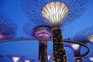 外媒:2020年新加坡出口额逆势增长4.3%