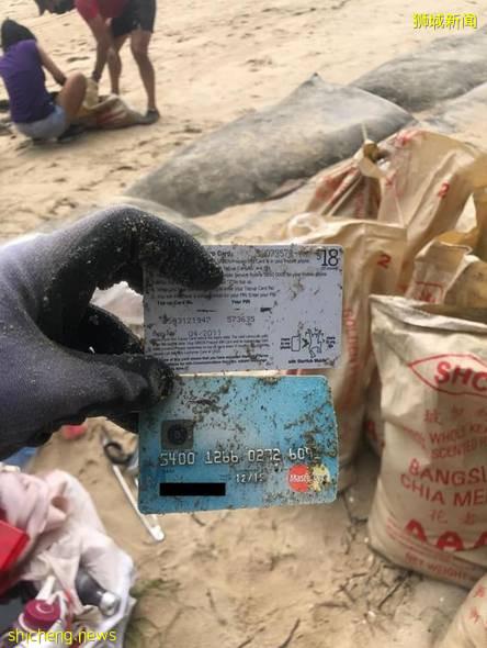 辛苦!劳动节新加坡志愿者们海滩捡垃圾 ,重达1700多公斤
