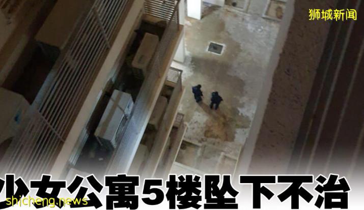 少女公寓5楼坠下不治