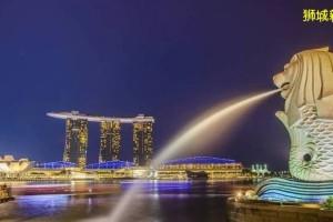 新加坡须灵活应对粮食安全问题