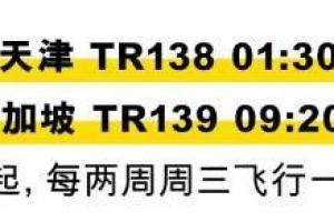 新加坡酷航9至11月份回国航班已更新,回国你能赶哪班