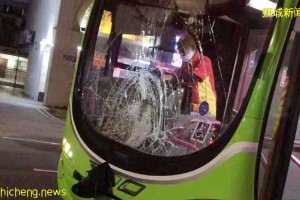 芽笼车祸 女子遭巴士撞昏迷送院