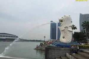 去新加坡淡马锡理工学院留学要多少费用,家境一般可以去吗