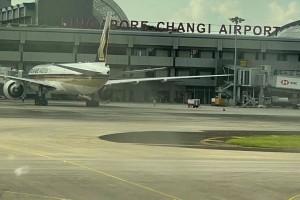祖孙三人新加坡飞上海最新攻略,17小时全记录