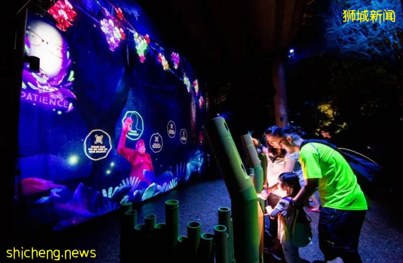 """新加坡动物园沉浸式多媒体夜行体验""""RAINFOREST LUMINA"""" CAAPA周末分享"""