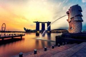 在新加坡注册公司可以申请移民吗