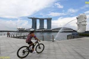 新加坡公司可以自己注册吗?新加坡公司注册后哪些信息可查询