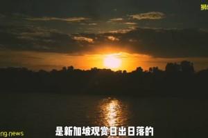 疫情不再宅家!新加坡10个超美户外蓄水池走起~人少风景好
