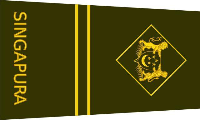 各国军衔标识:新加坡