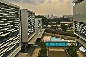 新加坡国际学校课程体系介绍