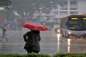 出门请带伞 没事别站树下,三月下半月将有更多雷阵雨