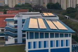 新加坡三所小学采取太阳能板发电方式,年产电量可供297个组屋用电
